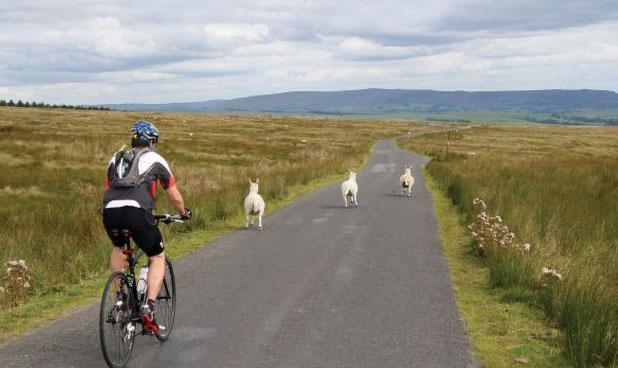Não ultrapasse o limite que seu corpo apresenta durante a pedalada